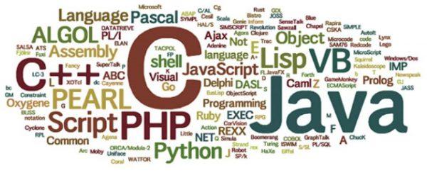 تعداد زیاد زبان های برنامه نویسی